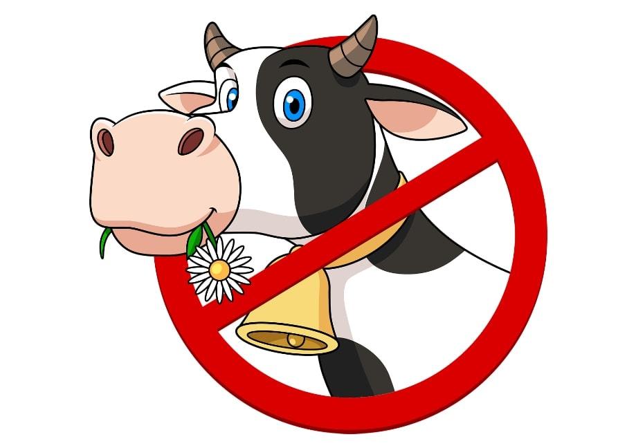 Prohibido lactosa